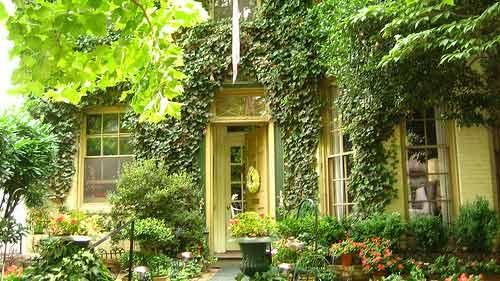 Mur v g tal est ce qu 39 une fa ade ext rieure couverte de plantes grimpan - Plante grimpante pour facade maison ...