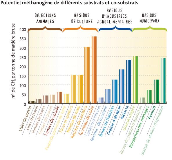 Potentiel méthanogène de différents substrats et co-substrats