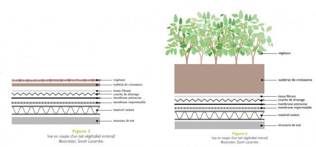 diff rents types de toits v g talis s intensif semi extensif exten cohabitation. Black Bedroom Furniture Sets. Home Design Ideas