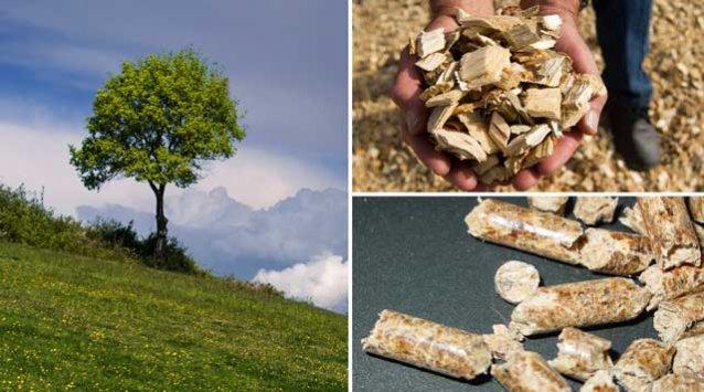 Série Chauffez vert pour moins cher (1) : les granules de bois