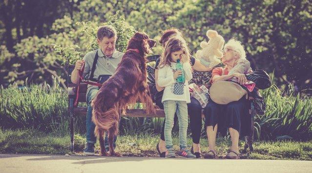 Habitation: solutions créatives pour les aînés