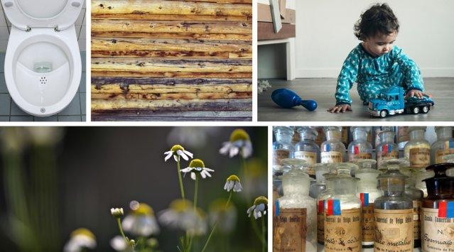 10 nouvelles fiches pour les accros de l'écologie résidentielle