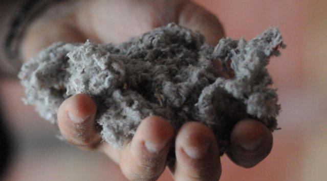 La cellulose pour isoler efficacement les murs