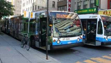 Bus STM