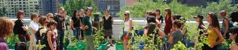 Collectif de recherche en aménagement paysager et agriculture urbaine durable