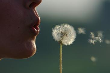 L'association pulmonaire du Québec vous aide à vous protéger du radon
