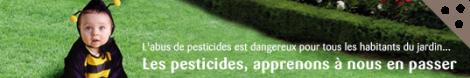 Un jardin sans pesticides grâce au site Jardiner Autrement