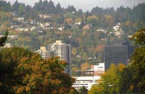 Ecohabitation à Portland (Oregon) : les neuf recettes d'une vraie ville écolo