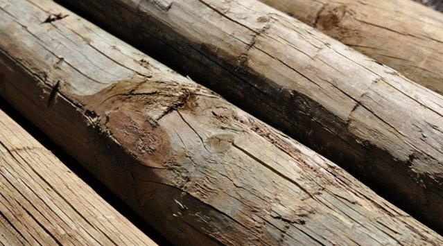 Bois, billots, récupérations des matériaux, richesse des fonds marins