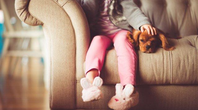 Le confort thermique dans la maison, ça se conçoit