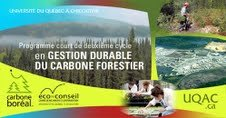 Programme court de 2e cycle sur la gestion durable du carbone forestier