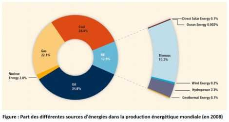 efficacite energetique : 80%, 50% ou 30% d'énergies renouvelables en 2050 ?