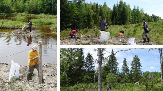 500 arbres plantés par Écohabitation et Arbre-Évolution