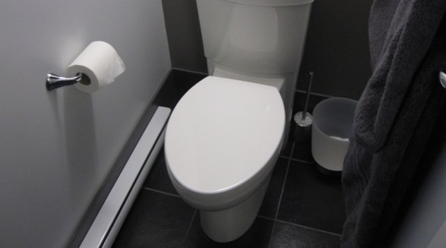Toilette Faible D Bit Geste R Novation Cohabitation