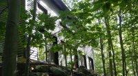 Atelier-visite à la maison Edelweiss