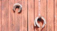 Fiche planchers écologiques : Réemployer un plancher