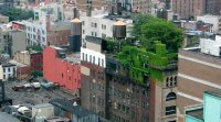 Réglementation toits verts : législation et avancements