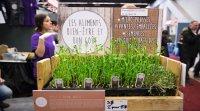 Expo Manger Santé et Vivre Vert: le bio et le local ont le vent dans les voiles