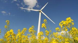 Électricité éolienne