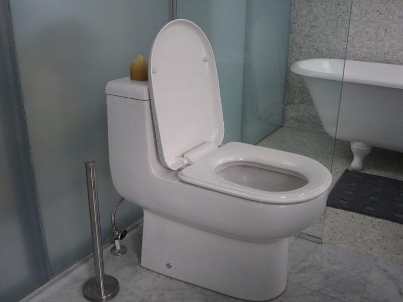 toilette faible d bit r novation cohabitation. Black Bedroom Furniture Sets. Home Design Ideas