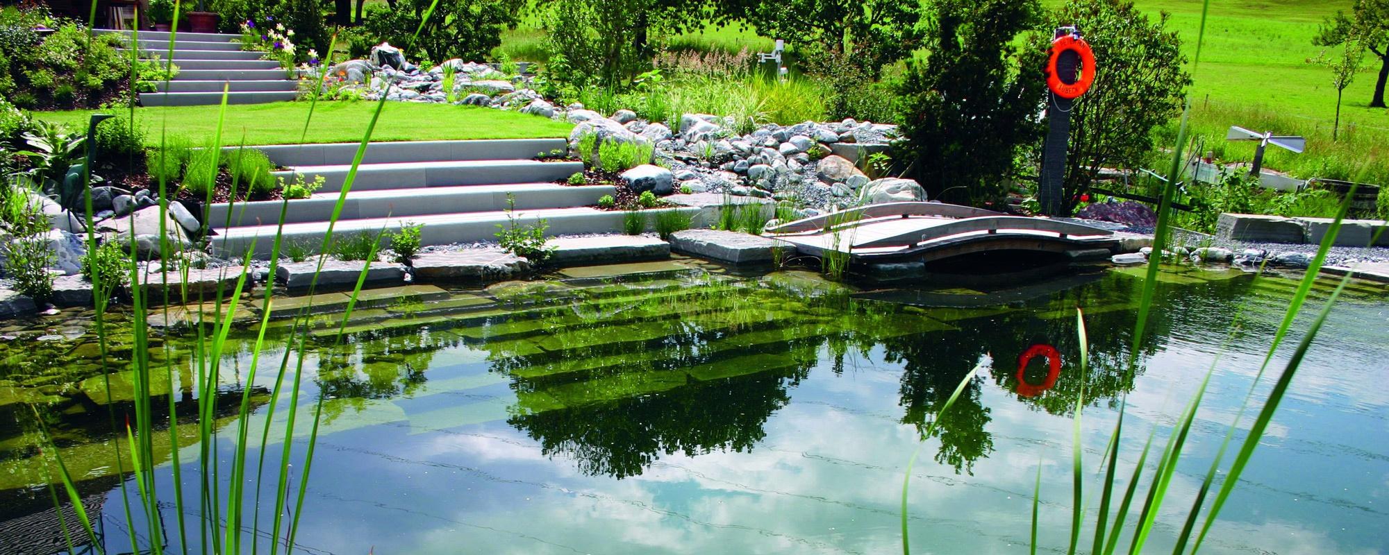 Construire Son Bassin De Jardin tout sur la piscine écologique et la piscine naturelle